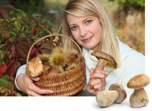 Woman gathering mushrooms and chestnuts